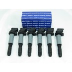 M702 Full Set of 6 Ignition Coils
